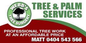 *Webbs Tree Surgery - Stump Grinding Rockingham